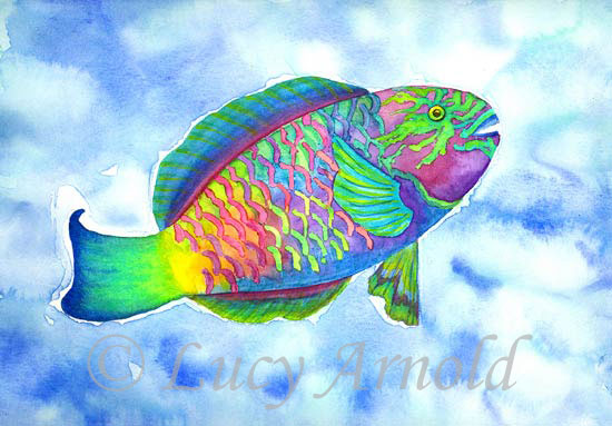 48e8f64783175&filename=Parrotfish.jpg